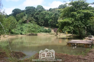 Ocean View Coffee Plantation - $1.2mm